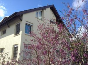 obrázek - Lovely Basel Apartment