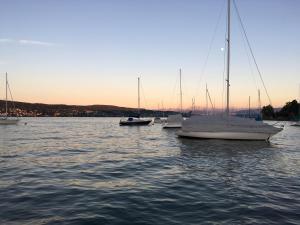 INSIDE FIVE - Lakeside Living