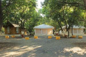 The Brook Ville, Resort  Sasan Gir - big - 27
