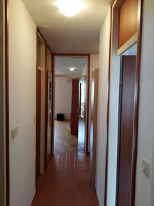 Apartment Svejk