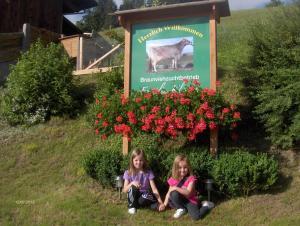 Bauernhof-Ferienhaus Klocker, Farmy  Hart im Zillertal - big - 24