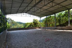 Pousada Baia Encantada, Guest houses  Porto Belo - big - 24