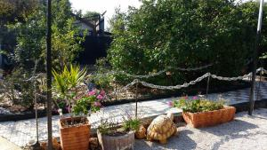 Ein bild von Asbn Magic Garden