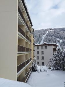 Ferienwohnung Sesvenna, Appartamenti  Davos - big - 19