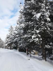 Ferienwohnung Sesvenna, Apartments  Davos - big - 18