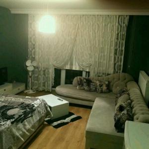 Loca Suite