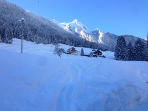 Ferienhaus Alpenherz