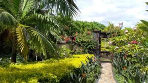 obrázek - Villa Calypso
