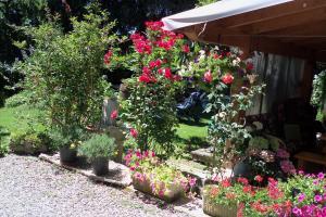 borgoeden, Bed and Breakfasts  Borgo Val di Taro - big - 1