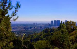 1099 - Beverly Hills Modern Compound, Vily  Los Angeles - big - 16