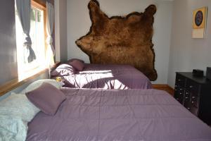 Bear Paw Retreat - Apartment - Soldotna