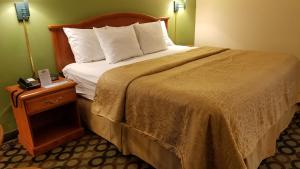 Days Inn Ashburn, Motels  Ashburn - big - 3