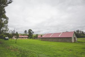 Skarbek Guesthouse, Affittacamere  Machadodorp - big - 7