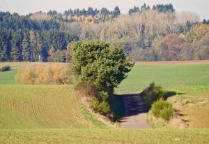 Weihermühle