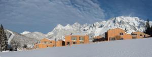 Rittis Alpin Chalets Dachstein, Apartmanhotelek  Ramsau am Dachstein - big - 25