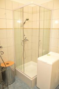 Classic Flat at Basilica, Apartments  Budapest - big - 35
