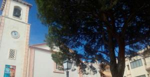 Albir Up Marfil, Ferienwohnungen  Alfaz del Pi - big - 16