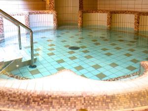 Lotus Therme Hotel & Spa, Resort  Hévíz - big - 23