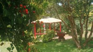 Sol del Paraíso, Case vacanze  Villarrica - big - 19