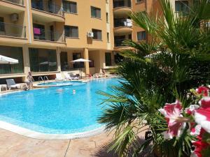 Bulgarienhus Amadeus 15 Apartments, Apartments  Sunny Beach - big - 7