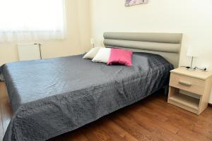 Purple Apartment, Ferienwohnungen  Novi Sad - big - 7