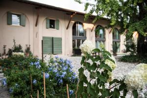 Agriturismo Corte Ruffoni, Farm stays  Zevio - big - 71