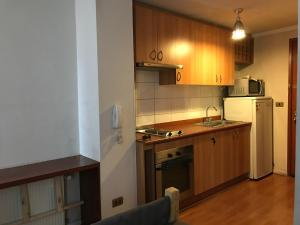 Tucapel Jimenez, Apartments  Santiago - big - 8