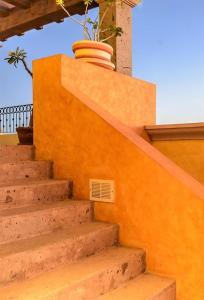 Cabo Paradise Ranch Estate, Dovolenkové domy  Cabo San Lucas - big - 36