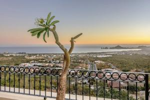 Cabo Paradise Ranch Estate, Dovolenkové domy  Cabo San Lucas - big - 44