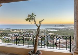 Cabo Paradise Ranch Estate, Dovolenkové domy  Cabo San Lucas - big - 50