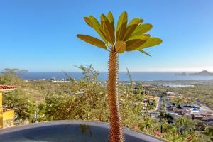 Cabo Paradise Ranch Estate, Dovolenkové domy  Cabo San Lucas - big - 69