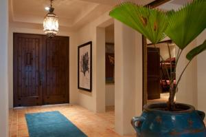 Cabo San Lucas Luxury 4 bedroom Gem 198, Holiday homes  Cabo San Lucas - big - 10