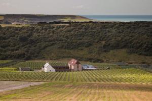 Flint Barns, Rathfinny Wine Estate