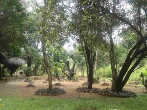 Guruge Villa Habarana, Inns  Sigiriya - big - 15