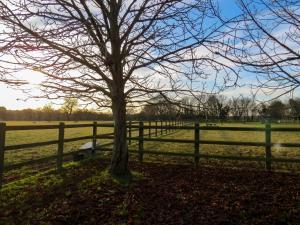 Appletree Cottage Fressingfield