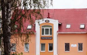 Отель ВИП - фото 25