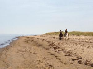 Ferienwohnung Strandläufer, Apartmanok  Börgerende-Rethwisch - big - 3