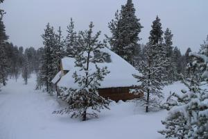 Husky Hut, Case vacanze  Ivalo - big - 18