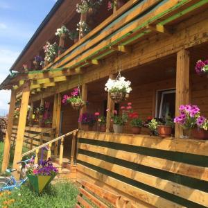 Гостевой дом Тункинская Долина - фото 6