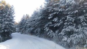 Chalet Four Season, Chalets  Zlatibor - big - 13