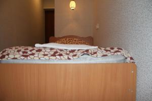 Отель Достоевский - фото 24