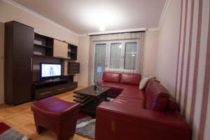 Apartman 5 - фото 5