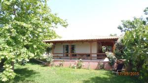 Green Villa near Airport