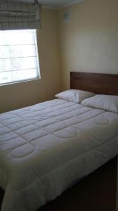 Lomas Del Rio III, Appartamenti  Valdivia - big - 7