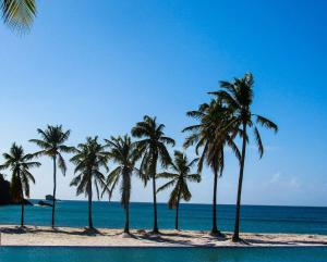 Royalton Saint Lucia Resort & Spa - All inclusive, Rezorty  Gros Islet - big - 30
