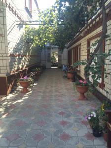 Гостевой дом на Майона Витязя 26, Витязево