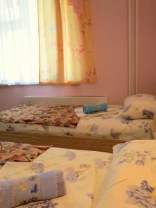 Hostel Gorodok, Hostels  Krasnoyarsk - big - 3