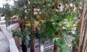 Apartments Edina - фото 25