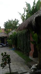Green Bowl Bali Homestay, Alloggi in famiglia  Uluwatu - big - 22
