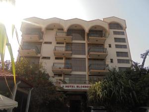 Hotel Blossom, Hotely  Dirē Dawa - big - 1